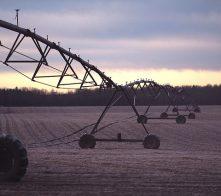 Irrigation lines in Sequim, WA.